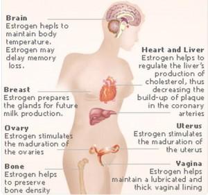 side effects of oestrogen