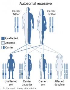 Pictures of Genetics for Maple Syrup Urine Disease