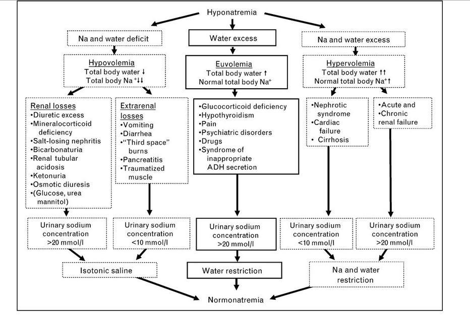 Hyponatremia Causes, Levels, Management Algorithm